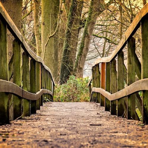 Intuition Die Reise Zu Deiner Inneren Weisheit