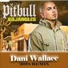 Pitbull - Bojangles (Dani Wallace 2018 Remix)