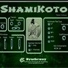 Virtual Koto Glissando Presets from ShamiKoto VST Win, Audio Unit macOS シャミコトバーチャル箏と三味線