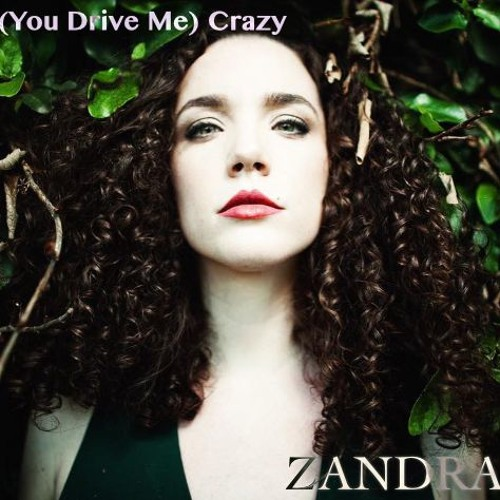 (You Drive Me)Crazy [Cover]