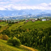 Folk tunes from Bucovina
