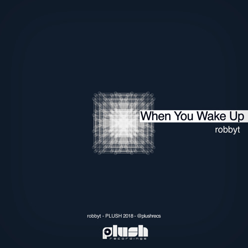 robbyt - When You Wake Up [PLUSH112]