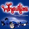 Teenage Dirtbag - Wheatus (harp cover)