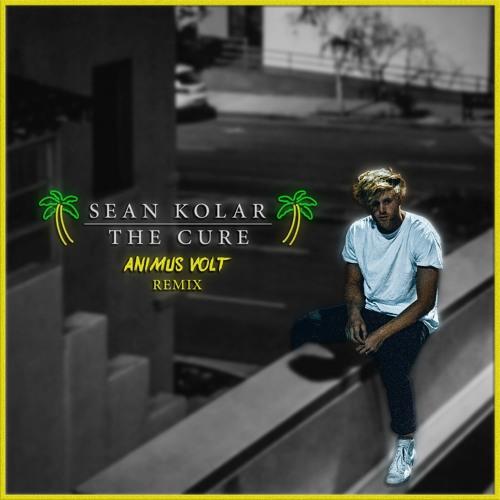 Sean Kolar - The Cure (Animus Volt Remix)