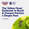 Episode 6 - The Yellow Fever Outbreak in Brazil (part 1)