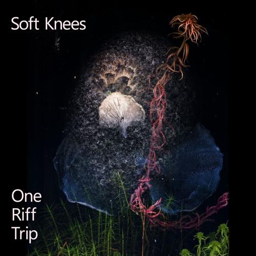 One Riff Trip