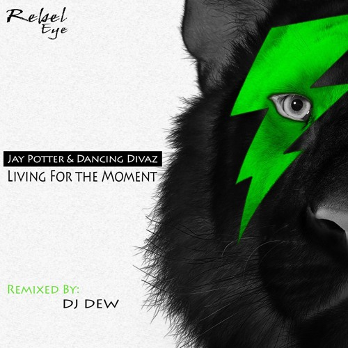 Jay Potter & Dancing Divaz - Living For The Moment