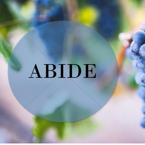 Abide: Wealth and Riches - Jeff Strong - Sun Jan 28, 2018