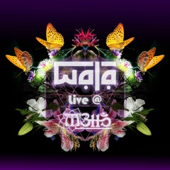 WALA Live at Metta with the Desert Dwellers