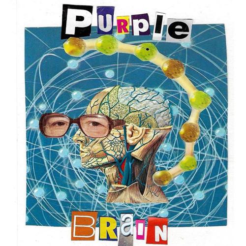 RRRastas - Wankers Anthem (VA - Purple Brain [A.N.A.L Records])