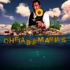Raça Negra - Cheia De Manias (DZ Denzel & Gunball Remix) Portada del disco