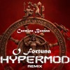 O FORTUNA - Hypermod (remix preview)