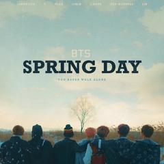 [REMIX] 봄날 (Spring Day) - BTS (방탄소년단)