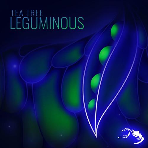 Tea Tree - Tea Tech sample [Mindspring Music]