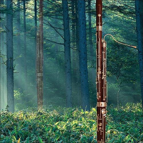 Bassoon Sonata No 1