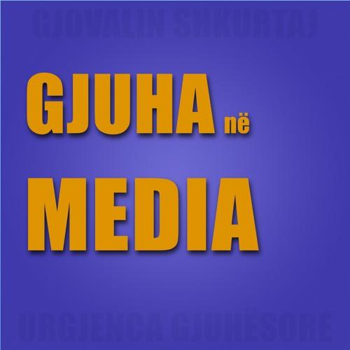 Emisioni 24 - Roli i mediave për mbarëvajtjen e mëtejshme të gjuhës shqipe