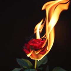 John Mayer - Slow Dancing In A Burning Room (Decadon Remix)