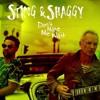 Sting & Shaggy - Don't make me wait ( Darius Rose re/make ) short version