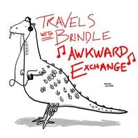 Awkward Exchange (Alex Lahey ukulele cover)