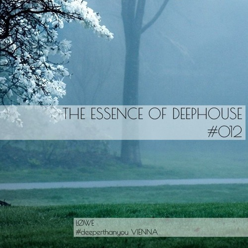 The Essence Of Deep House #012