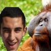 The king of the jungle feat the real tarzan Garillis