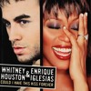 Whitney Houston & Enrique Iglesias - Could I Have This Kiss Forever (DJ RooBen Redrum)