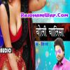 Choli Chalisa - (RajdhaniWap.Com)