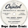 Ray Anthony - The Hokey Pokey (Dope Amine Bootleg) (just for fun :D)