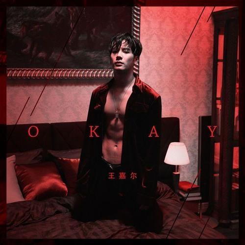 Jackson Wang ~Okay~ (8D Use Headphones)