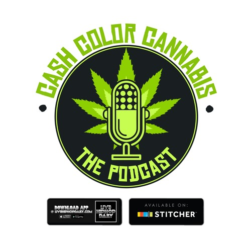 Will Carr Discusses How WillPower Products Came To Be, Stumbling Upon CBD Oil, Crowdfunding & More