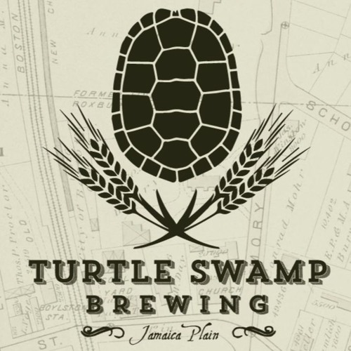 #121 - A Conversation with Turtle Swamp