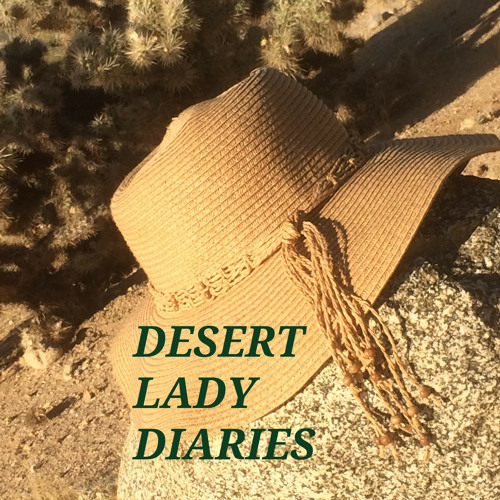 Desert Lady Diaries| Lindsey Anderson |Episode 26
