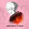 Sleep Circuit & Tciami - Cryofire
