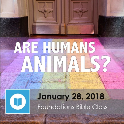 Are Humans Animals? part 1