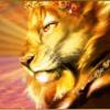 Lion God Chants - Conch Shell Beats