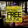 ACOUSTIC/COUNTRY MUSIC Happy Emotional ROYALTY FREE Download No Copyright Content | AS WE GO