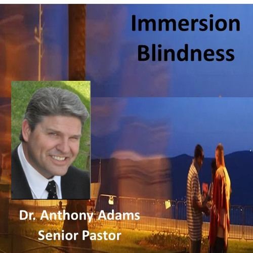 Immersion Blindness