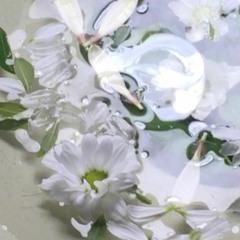 glass in plastic (with arad acid)