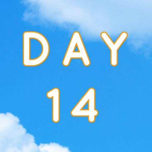 DAY 14b