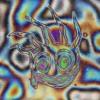 Calvin Harris - Nuh Ready Nuh Ready (Sam Berson Remix) Ft. PARTYNEXTDOOR (FREE DOWNLOAD)