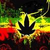 New Reggae Music #1