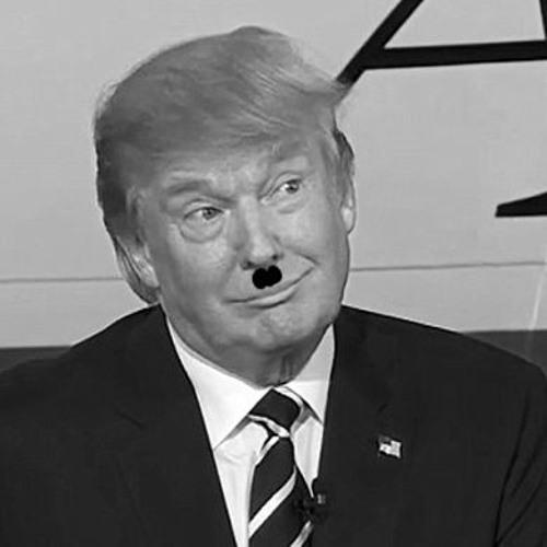 I Did Nazi That Coming
