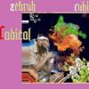 RADICAL - Ft Zebruh.6 ( BONUS TRACKS) :))))