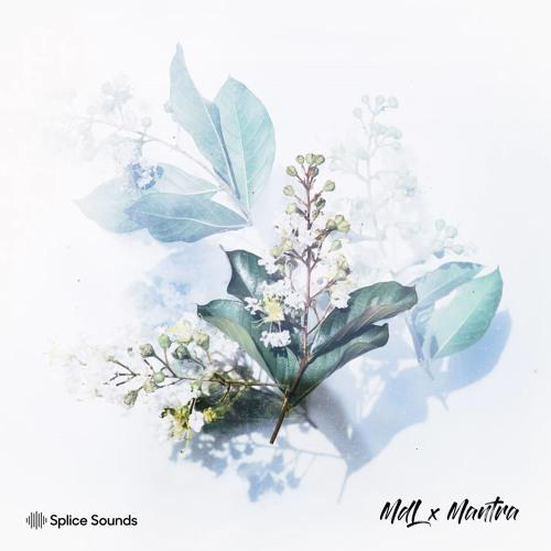 MdL x Mantra Sample Pack