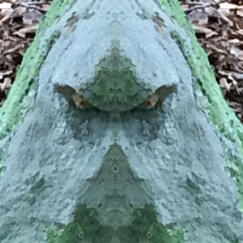 Alien Stone Dig 2 13 18