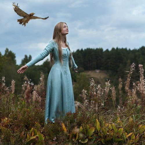 Finist Yasniy Sokol - Fantasy for two folk songs by gusli (slavic harp)