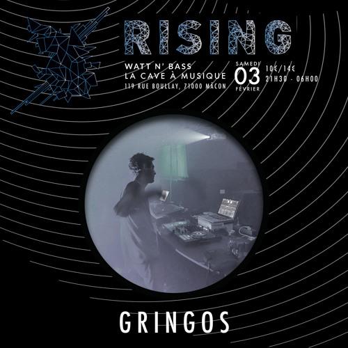 Gringos - DJ Set @ RISING (03-02-2018 @ Cavazik)
