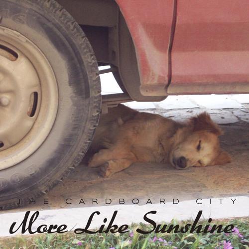 More Like Sunshine