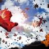 Fear of falling leaves