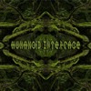 Humanoid Interface Device - liveset 2011